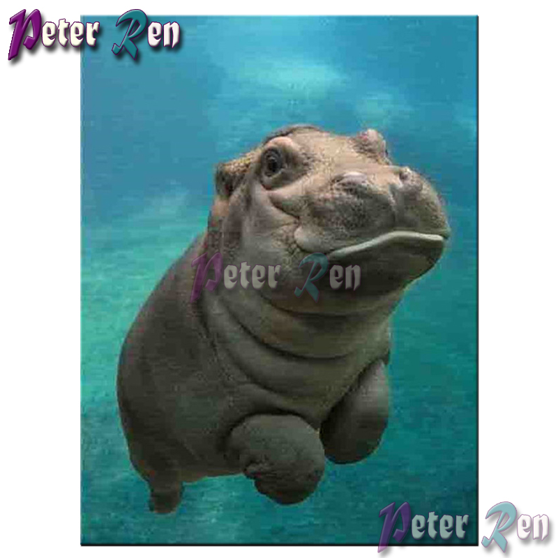 5d animal Diamond painting Ocean hippo Diy full Square/round Rhinestones cross stitch embroidery picture Modern Home Decoration