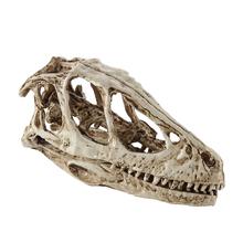 Realistyczna żywica czaszka dinozaura figurka kolekcje do malowania Bar Party tanie tanio CN (pochodzenie) Żywica Skull Fossil Model Zwierząt