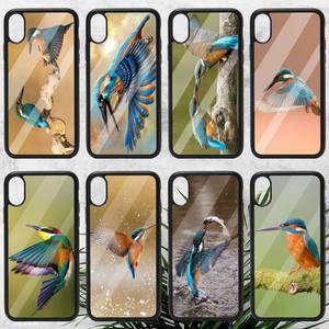 Image 1 - kingfisher Phone Case TPU For iPhone X XR XS 11 12 mini Pro MAX 6 6S 7 8 Plus SE 2020