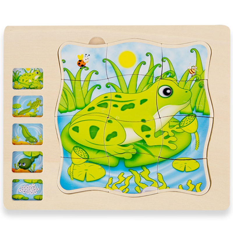 Hot-Cartoon Frog Animal Growth Cycle Toy Baby Puzzle Kindergarten Early Education Educational Toys