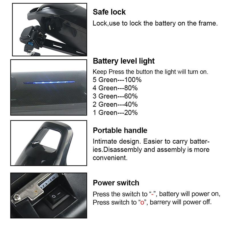 Dolphin ebike battery 1