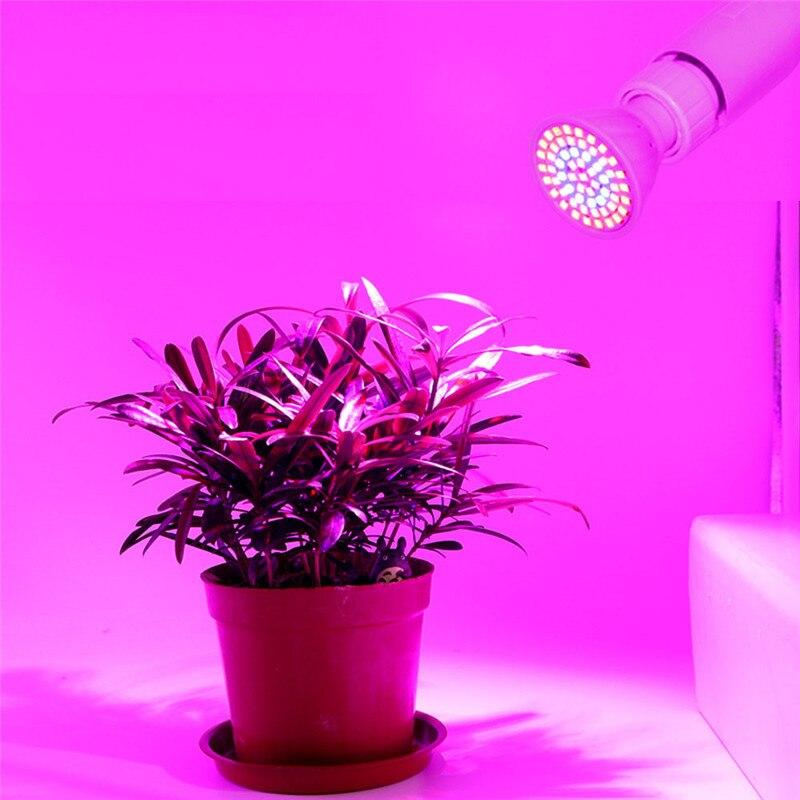 1pc Grow Led Light MR16/E14/GU10/E27 Growing Lamp Bulbs AC220V 60leds/80leds Lampe Plante Led Grow Lamp
