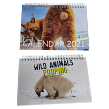 Calendar Wall Poop Table-Decoration Animal Mischievous Funny Beautiful