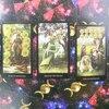 2021 Tarot Divination Beginners. Witch Tarot.   Affectional Divination Fate Game. Game Deck. Mystical Affectional Divination.