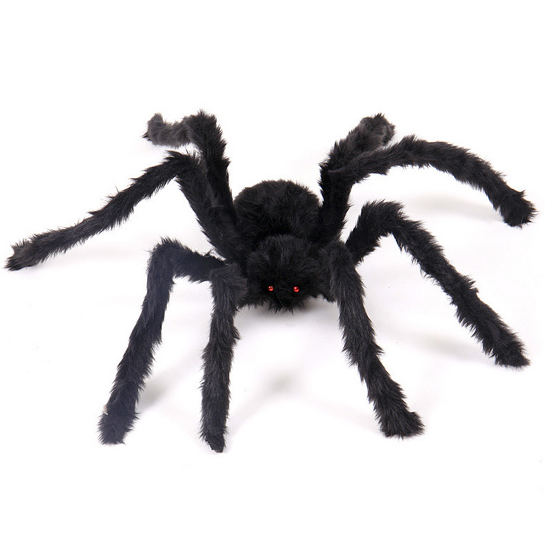 явление картинка паука большого черного заседание стало очень