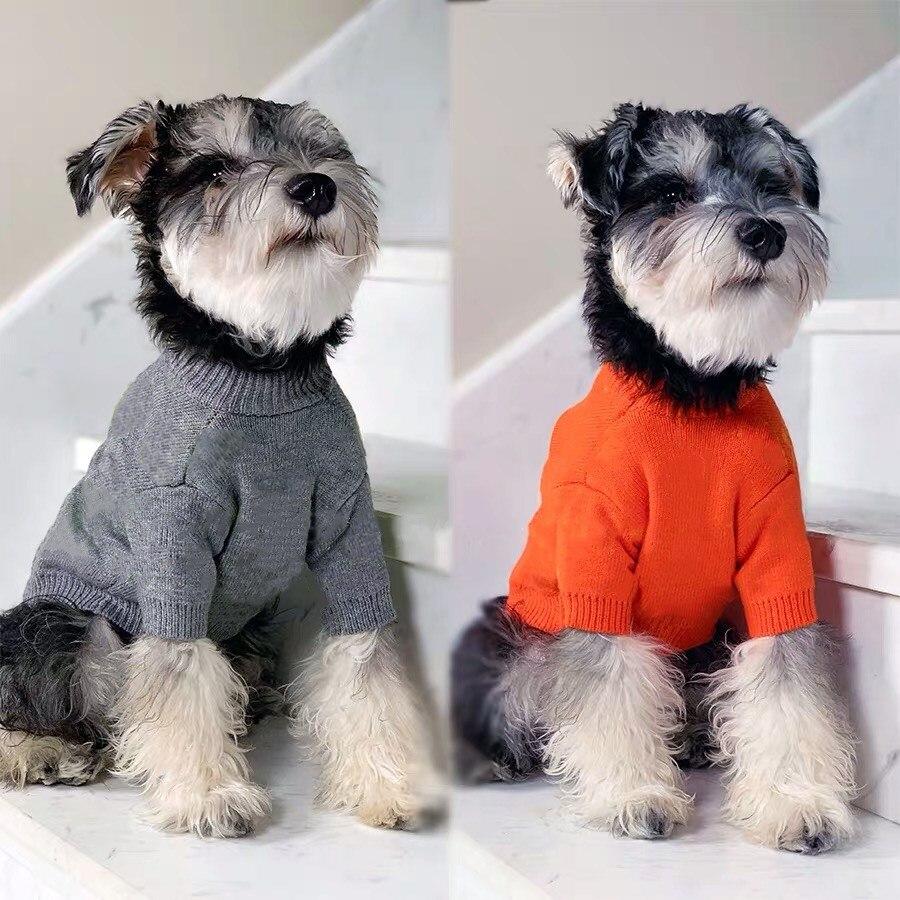 Модный свитер для питомца