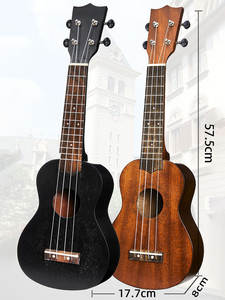 SUkulele Guitar Begin...