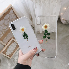 Real Flowers Dried Flowers Transparent Drop Glue Back Cover for IPhone