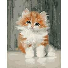 Gatyztory diy живопись по номерам милый кот животное акриловый