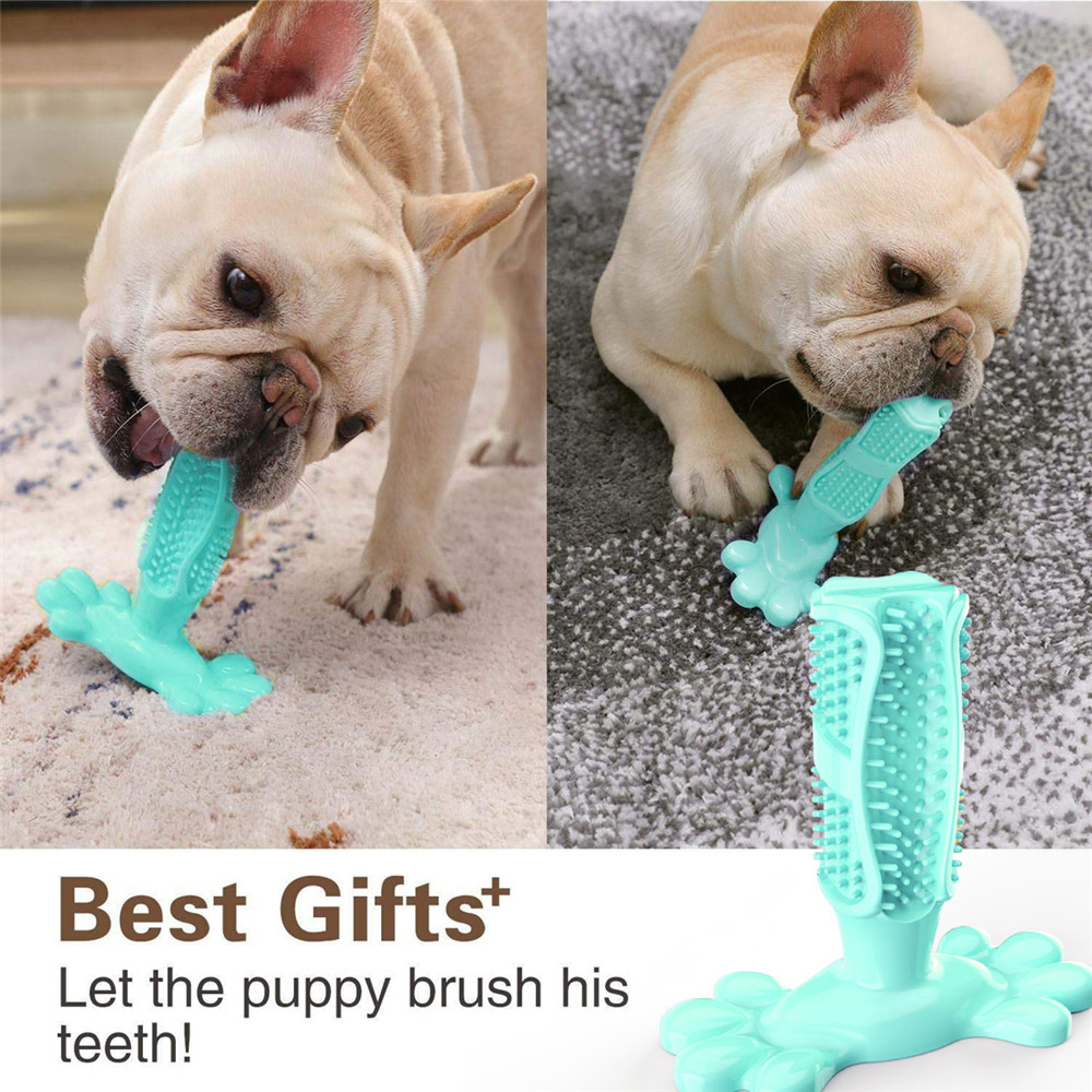 FDA Rubber Kong Dog Toys Dog Toothbrush Toy Dog Accessories Brushing Stick Pet Supplies Popular Puppy