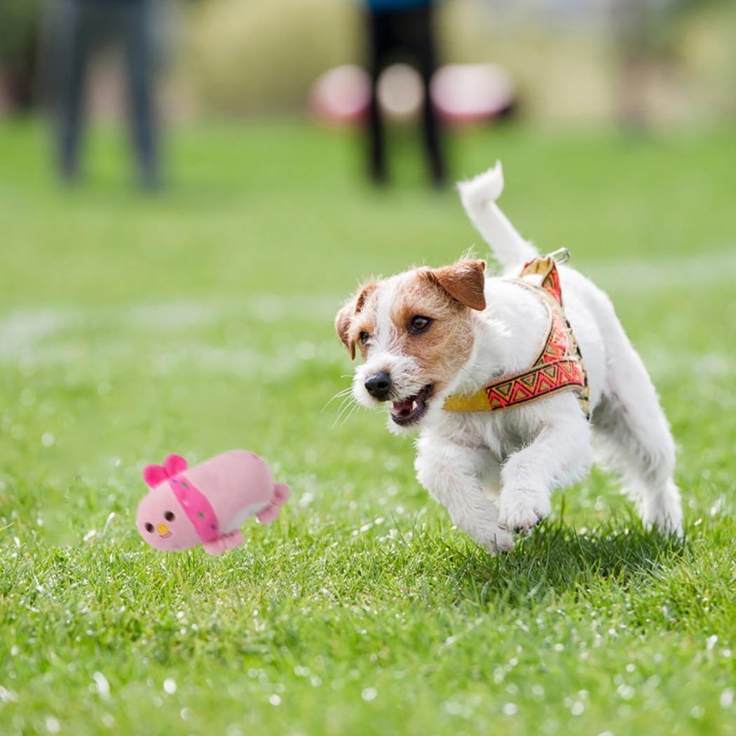 1 шт., плюшевая игрушка-пищалка для собак-5