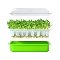 Seed Sprouter Tray BPA Free PP Soil Free Wheatgrass Grower Lid Plate Hydroponic|Nursery Pots| |  -