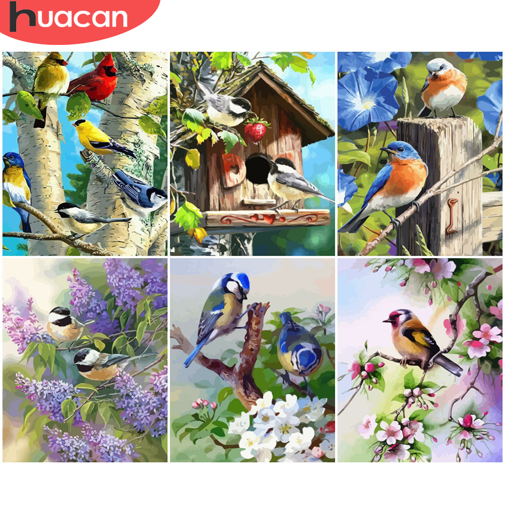 HUACAN Painting By Number Flower Bird Drawing On Canvas HandPainted Painting Art Gift Pictures By Number Animal Kits Home Decor