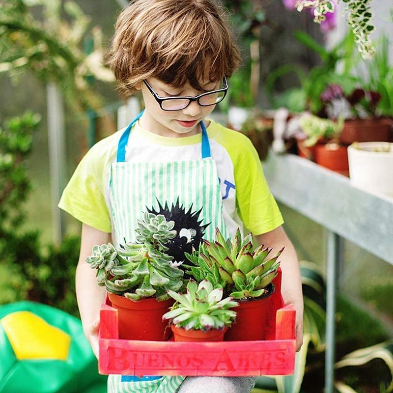 130 Pcs 10cm Plastic Plants Nursery Seed Starting Pots for Succulents Seedlings Cuttings Transplanting Home Garden Flower Decor 5