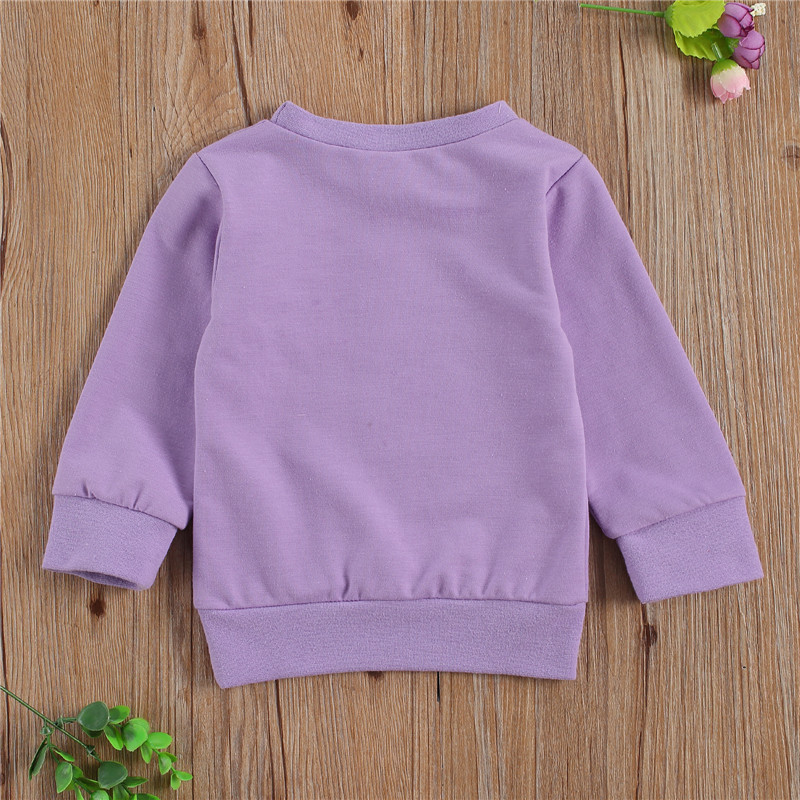 Winter Spring Cotton Children Clothing Boys Sweatshirt Baby Boy Clothes Girls Sweatshirt Costumes Kids Pullover Outfit Tops 0-3Y 2