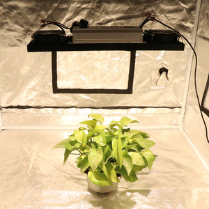 Image 5 - CREE CXB3590 200W 36000LM 3500K 5000K Dimmable COB LED Grow Light Full Spectrum Growing Lamp Indoor Plant Growth Panel Lighting