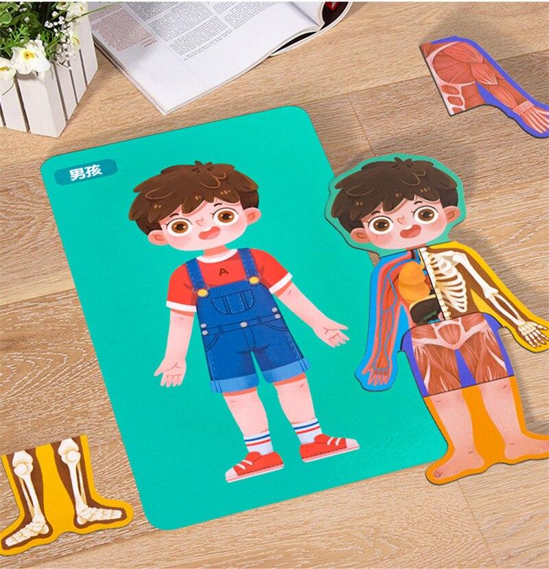 Quebra-cabeças infantil de madeira, 1 conjunto, para