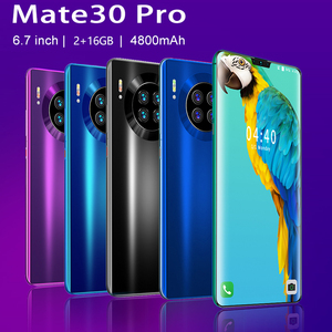 SOYES Mate 30 Pro 6.7inch Cell