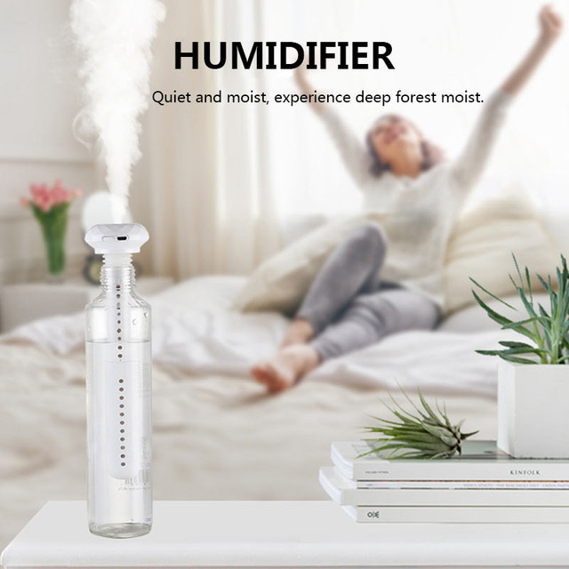 H2O Portable Humidifier 2