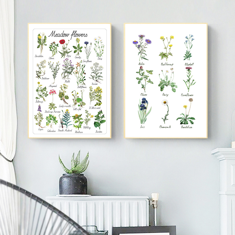 Montessori Flowers Art Canvas Painting Educational Poster Botanical Kindergarten Wall Art Picture Prints Kids Room Wall Decor