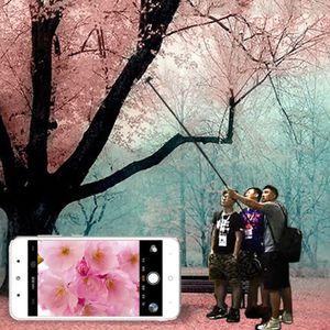 """Image 5 - 3M Nhôm Monopod Ổ Cắm Kéo Dài Cao Cấp Gậy Selfie Cho GoPro iPhone iPad DSLR Camera Hành Động 3.5 """"10"""" Inch điện Thoại Di Động Máy Tính Bảng"""