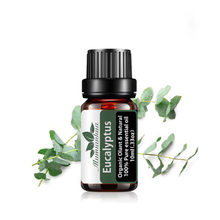 Huiles essentielles d'eucalyptus pures, Diffuseur de parfum, humidificateur