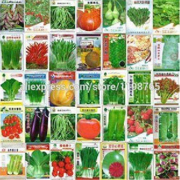 100 Pcs Vegetable Bonsai Plant Cucumber Eggplant Pepper Pumpkin Cabbage Shallot Carrot Tomato Potted Balcony Garden Four Seasons