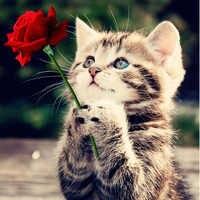 100% completo 5D Diy Daimond gato pintura con una rosa 3D diamante pintura redonda diamantes de imitación pintura bordado