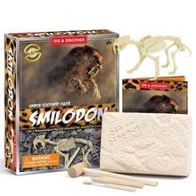 Jurassic Dinosaur Fossil Excavation Kits Dinosaur Models Archeology Set Figure Education Gift For Children Birthday Gifts