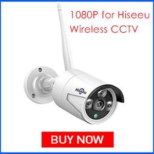 Hiseeu 1080P IP Camera 300