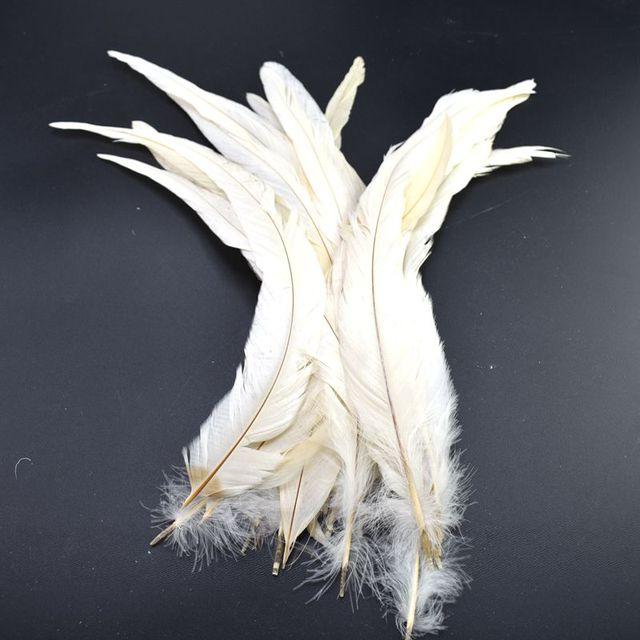 Plumes de coq blanc de 100 pièces