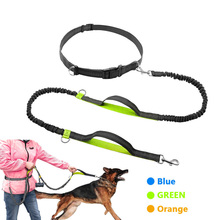 Get more info on the Sports Dog Leash Running Jogging Waist Belt Pet Elastic Double elasticity Leash For Up to 150 lbs Large Dogs Free Bag Dispenser