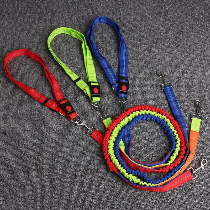 Pet Supplies Proof Punch Elastic Nylon Pet Running Hand Holding Rope Dog Traction Belt