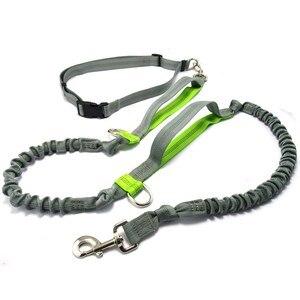 Image 3 - Pet product Hondenlijn Running belt Jogging Sport Verstelbare Nylon Hond touw Met Reflecterende Strip Pet Accessoires Handen Gratis