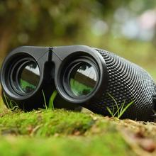 Binoculars Paul Telescope Small Portable Low Light Level Night Vision Glasses
