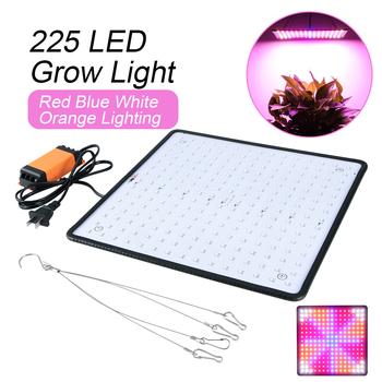 Full Spectrum 225 lampa ledowa do hodowli roślin USB LED roślin rosną taśmy AC 85-240V Fitolampy świetlówka do roślin dla roślina doniczkowa kwiat sadzonka tanie i dobre opinie ABEDOE AS show 25 w