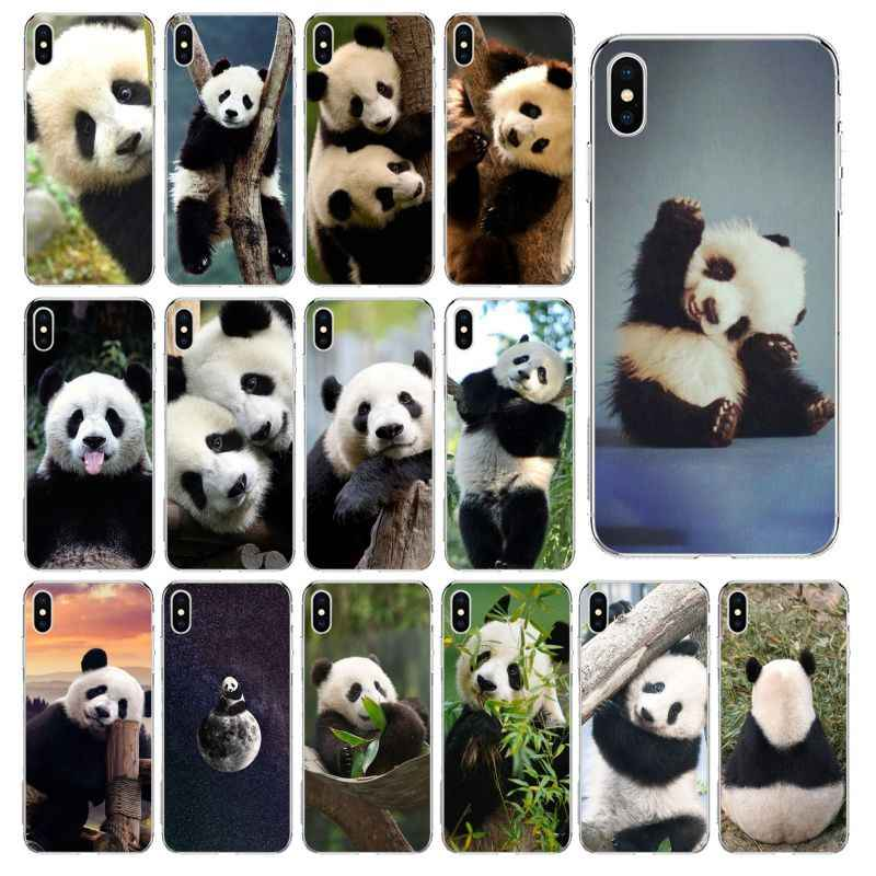 Cute Animal Panda Transparante Tpu Soft Phone Cover Voor Iphone 11 Pro Xs Max 8 7 6 6S Plus X 5 5S Se 2020 Xr Cover