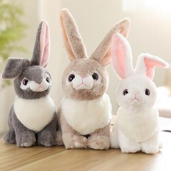 בובות ארנבים