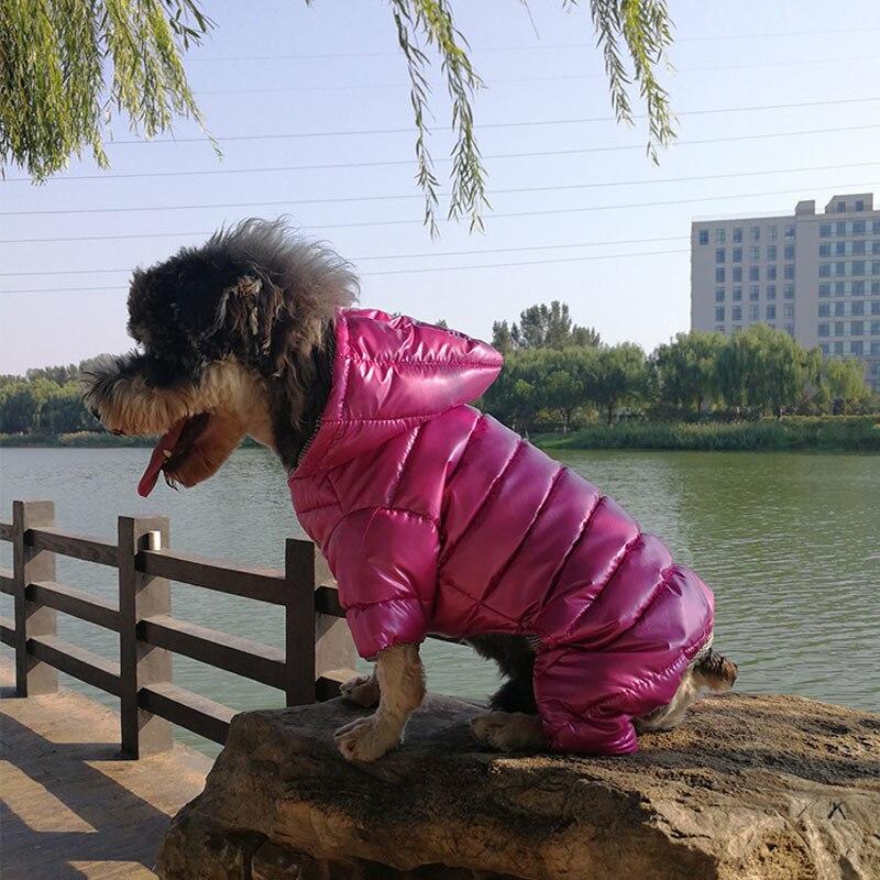 Dog jumpsuit clothes  (4)