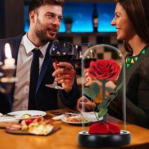 Image 5 - 2020 아름다움과 야수 신선한 꽃 발렌타인 데이 유리 돔에 빛으로 빨간 영원한 장미 크리스마스 선물 Dropshiping