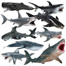 12 pçs simulação vida marinha modelo de animal brinquedo gigante dente tubarão assassino baleia azul baleia animal tubarão modelo educacional brinquedo meninos