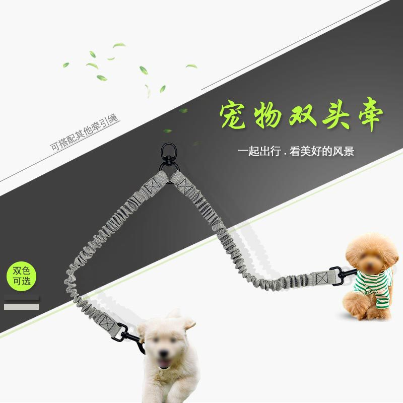 Hot Selling Pet Supplies Reflective Double Headed With Walk The Dog One Plus Two Distraction Retractable Reflective Dog Traction