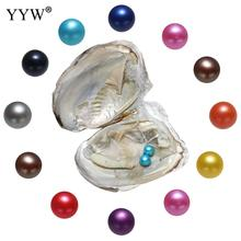 10pcs/Bag Natural Pearl Freshwater Cultured Pearl Oyster With 7-8 mm Oval Random Color Pearl DIY Birthday Gifts Vacuum-Packed 10pcs 100% natural pearl full hole cultured freshwater white rice pearl beads 7 8 mm