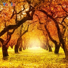 Yeele Autumn Tree Leaves Natural Scenery Photography Backgrounds Custom Photocall Photographic Backdrop For Photo Studio Props цена