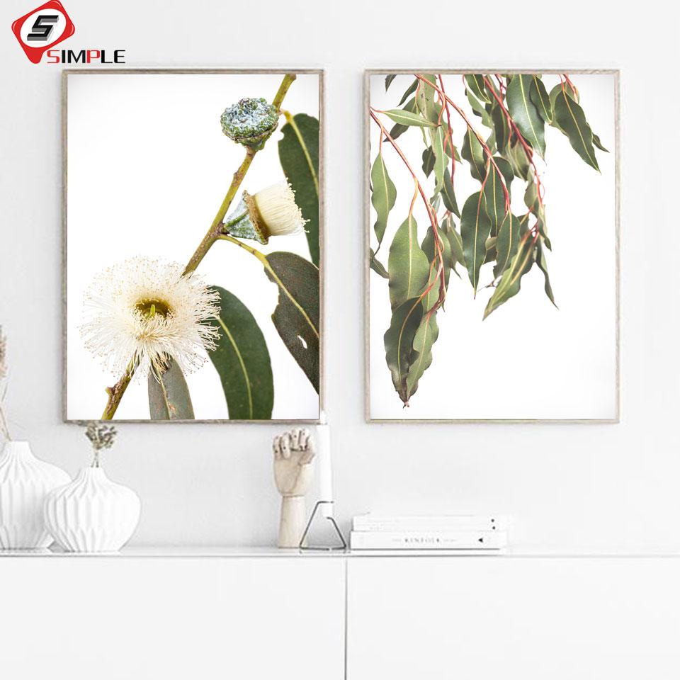 Large Wall Art Poster Australian Protea Protea Native Flower Photography Shipped Pri Printed Poster Botanical Australian Native Print