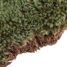 Yeşillik manzara yosun liken modeli 1/35 askeri kum zırh yapı oyuncak