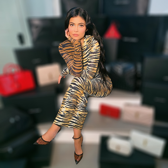 Kylie jenner Inspired Long Tiger Print Jersey Dress Brown and Black Printing Maxi Dress