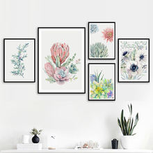 Свежие растения суккуленты кактус идиллическая настенная Картина