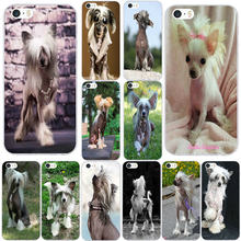 Dog Of Breed Chinese Crested Soft TPU Mobile Phone Cases for iPhone X XR XS 11 Pro Max 7 6 6s 8 Plus 4 4S 5 5S SE 5C Bags(China)