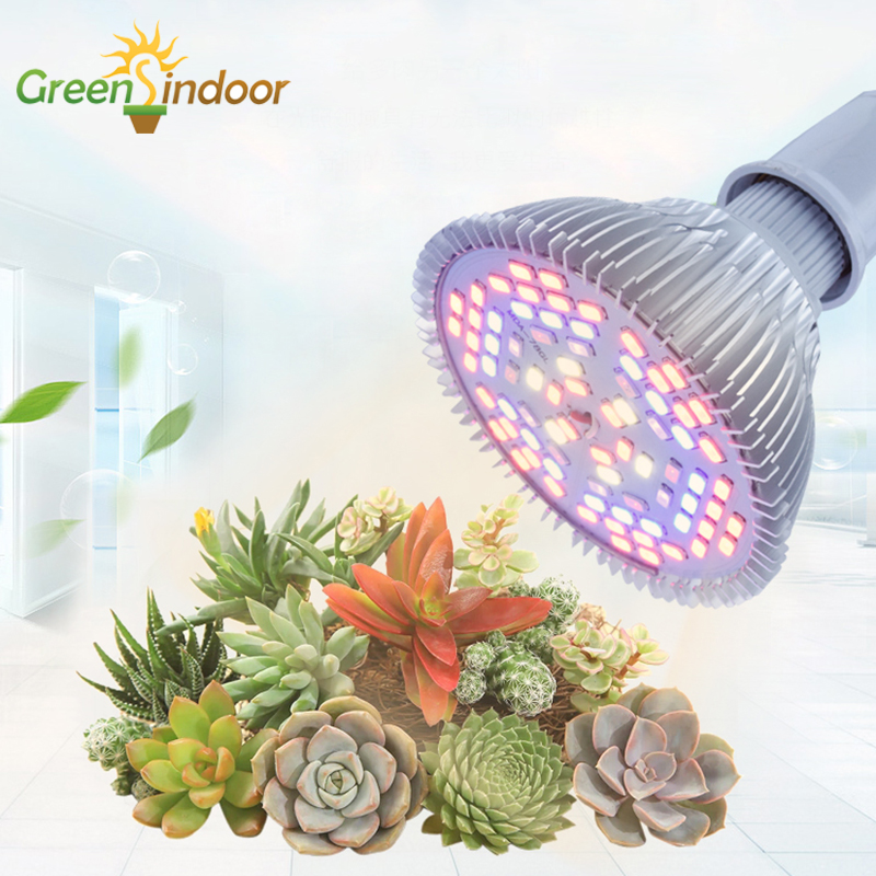 Full Spectrum Led Grow Light Bulbs E27 E26 Indoor Lights For Plant Phyto Lamp LED 80W 50W 30W Plants For Lights Grow Tent Garden